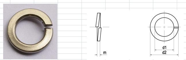 Long đen vênh (vòng đệm vênh)
